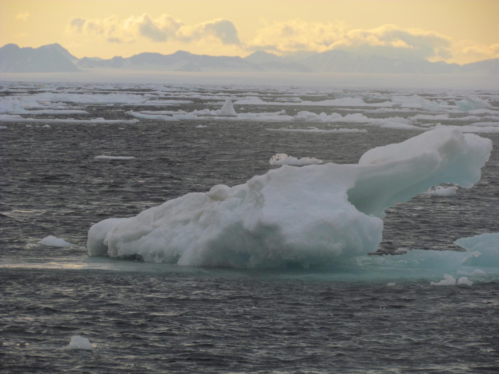 Arctic Ocean - Expedition Arctic Ocean Raptor 2011